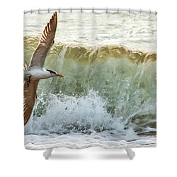Fishing The Surf Shower Curtain