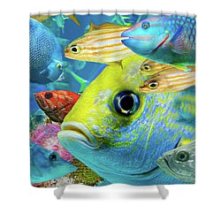 Fishy Collage 02 Shower Curtain