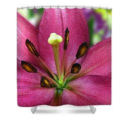 Five Points Shower Curtain
