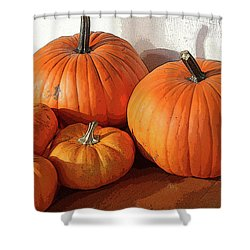 Five Pumpkins Shower Curtain