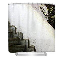 Shower Curtain featuring the photograph Five Steps To Glory by Prakash Ghai