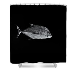 Fla-150811-nd800e-26052-bw-selenium Shower Curtain