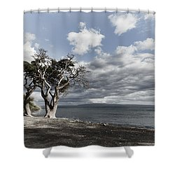 Fla-150717-nd800e-25953-color Shower Curtain
