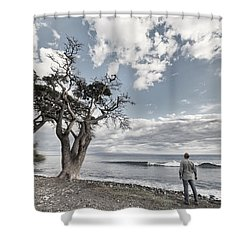 Fla-150717-nd800e-25974-color Shower Curtain