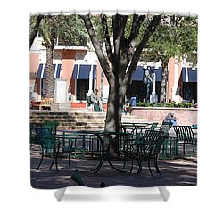 Flagler Park Shower Curtain by Rob Hans