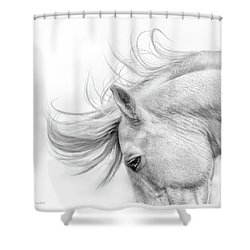 Flair Shower Curtain