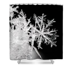 Flake Shower Curtain