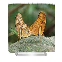 Shower Curtain featuring the photograph Flambeau Butterfly - 2 by Paul Gulliver