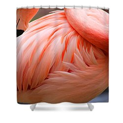 Flame Colored Shower Curtain