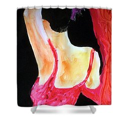 Flamenco Evening Shower Curtain