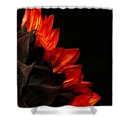 Shower Curtain featuring the photograph Flames by Judy Vincent