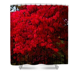 Flames Of Autumn Shower Curtain