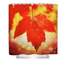 Flaming Autumn Shower Curtain