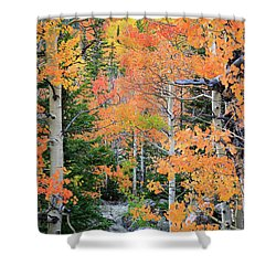 Flaming Forest Shower Curtain by David Chandler