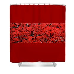 Shower Curtain featuring the photograph Flaming Red Panorama II By Kaye Menner by Kaye Menner