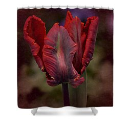 Flaming Tulip Shower Curtain by Richard Cummings