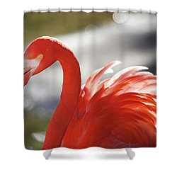 Flamingo 2 Shower Curtain by Marie Leslie