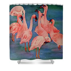 Flamingo Convention In The Square Shower Curtain by Judy Mercer