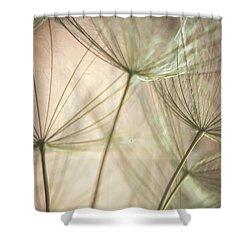 Flamingo Dandelions Shower Curtain by Iris Greenwell