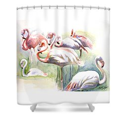 Flamingo Fiesta Shower Curtain