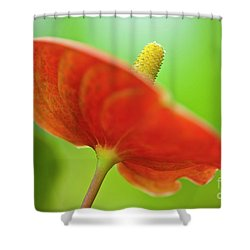 Flamingo Flower 2 Shower Curtain by Heiko Koehrer-Wagner