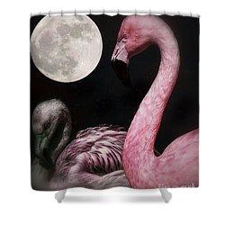 Flamingo Moon  Shower Curtain