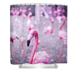 Shower Curtain featuring the photograph Flamingo by Setsiri Silapasuwanchai