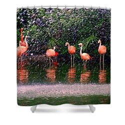 Flamingos II Shower Curtain by Susanne Van Hulst