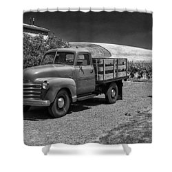 Flat Bed Chevrolet Truck Dsc05135 Shower Curtain