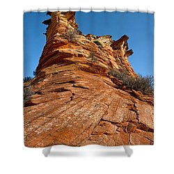 Flat Top Shower Curtain by Christopher Holmes