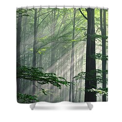 Fleeting Beams Shower Curtain