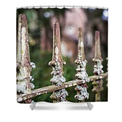 Shower Curtain featuring the photograph Fleur De Lis Finial by Andy Crawford