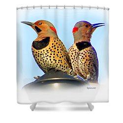 Flicker X2 Shower Curtain