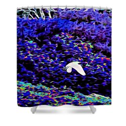 Flight 1 In Abstract Shower Curtain