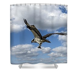 Flight Among The Clouds Shower Curtain
