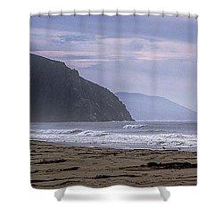 Flight Fro Morro Bay Shower Curtain