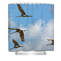Flight Of The Cranes Shower Curtain