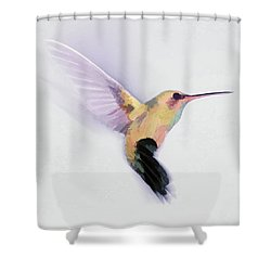 Flight Of The Hummingbird Shower Curtain