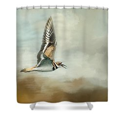 Flight Of The Killdeer Shower Curtain by Jai Johnson