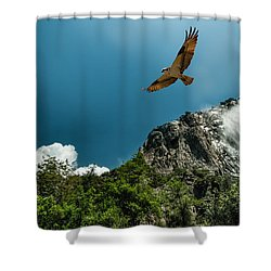 Flight Of The Osprey Shower Curtain