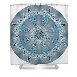 Flight Of The Tundra Swan Mandala Shower Curtain