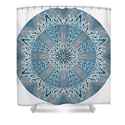 Flight Of The Tundra Swan Mandala Shower Curtain