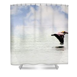 Shower Curtain featuring the photograph Flight Of Thepelicans by Marty Koch