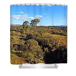 Flinders Ranges Shower Curtain by Bill Robinson