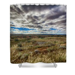 Shower Curtain featuring the photograph Flinders Ranges Fields  by Douglas Barnard