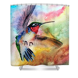 Da198 Flit The Hummingbird By Daniel Adams Shower Curtain