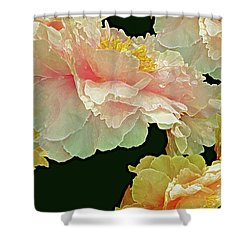 Floating Bouquet 31 Shower Curtain