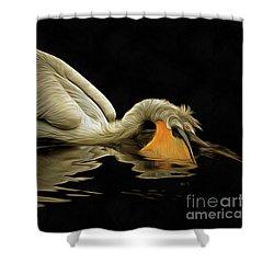 Floating Dalmatian Pelican Shower Curtain
