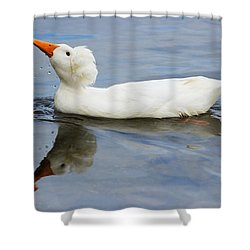 Floating Duck Shower Curtain