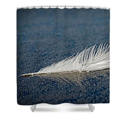 Floating Feather Reflection Shower Curtain
